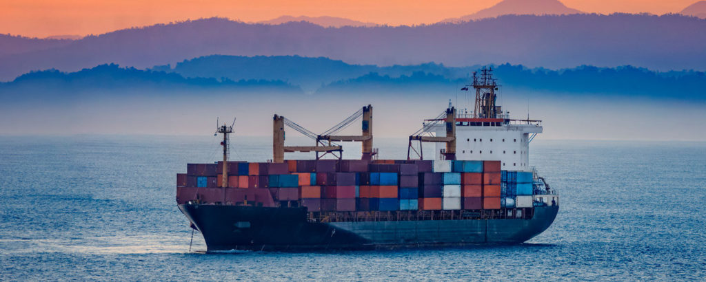 Transporte Marítimo Delfin Group
